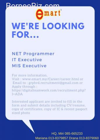 NET Programmer, IT Executive, MIS Executive