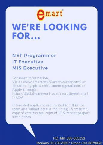 NET Programmer, IT Executive, MIS Executive