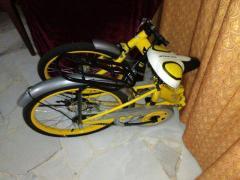 "20"" Folding Bike (SOLD)"